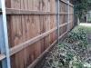 Fencing 11